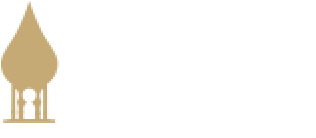 Bank of Tampa mobile logo